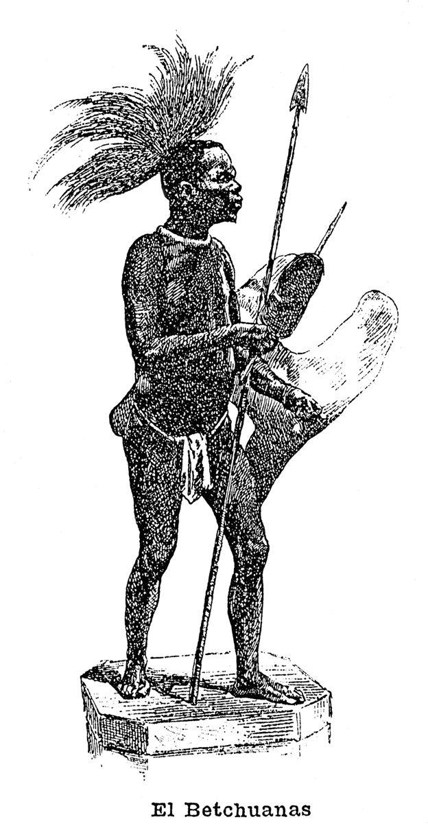 Bosquimano de Bañolas